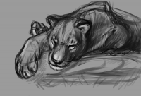 lioness_resting_on_a_rock by Bloodywings